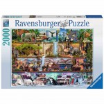 Wild Kingdom Shelves - Puzzle 2000