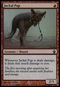 Jackal Pup (Fire and Lightning)