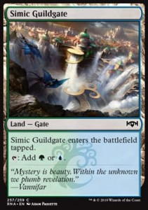 Simic Guildgate ver 1 (Ravnica Allegiance)