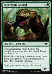 Excavating Anurid (Modern Horizons)