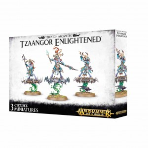 Disciples of Tzeentch - Tzaangor Enlightened - AoS / WH 40K