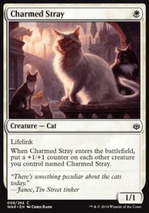 Charmed Stray (War of the Spark)