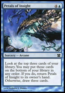 Petals of Insight (Modern Masters)